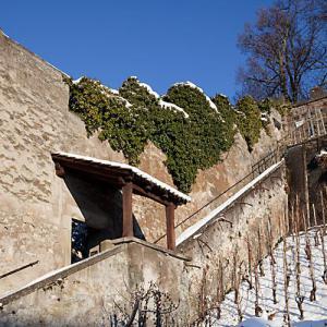 Hinter der Stadtmauer steht das Kloster