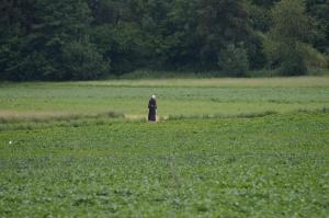 ein einsamer Wanderer