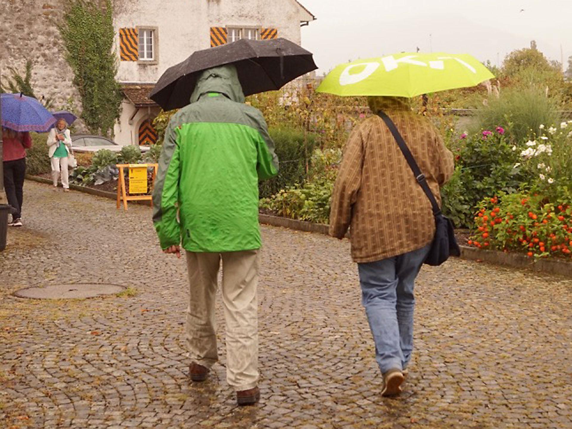Gelb ein Schirm, gelb eine Blume, gelb ein Orientierungsschild.